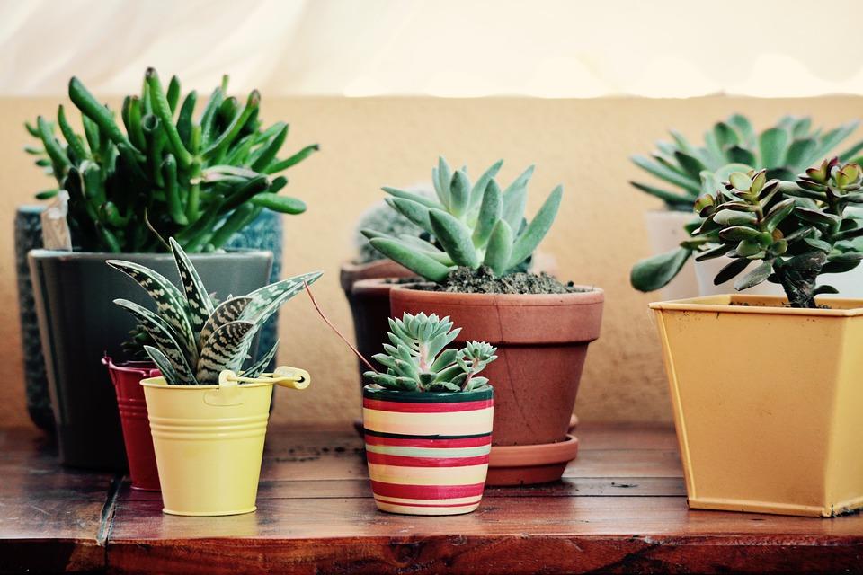Décorer une terrasse : les aménagements à prévoir