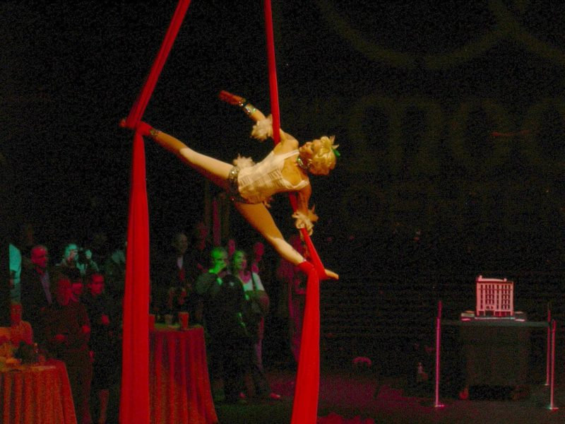 Une danseuse aérienne pour l'animation de votre événement