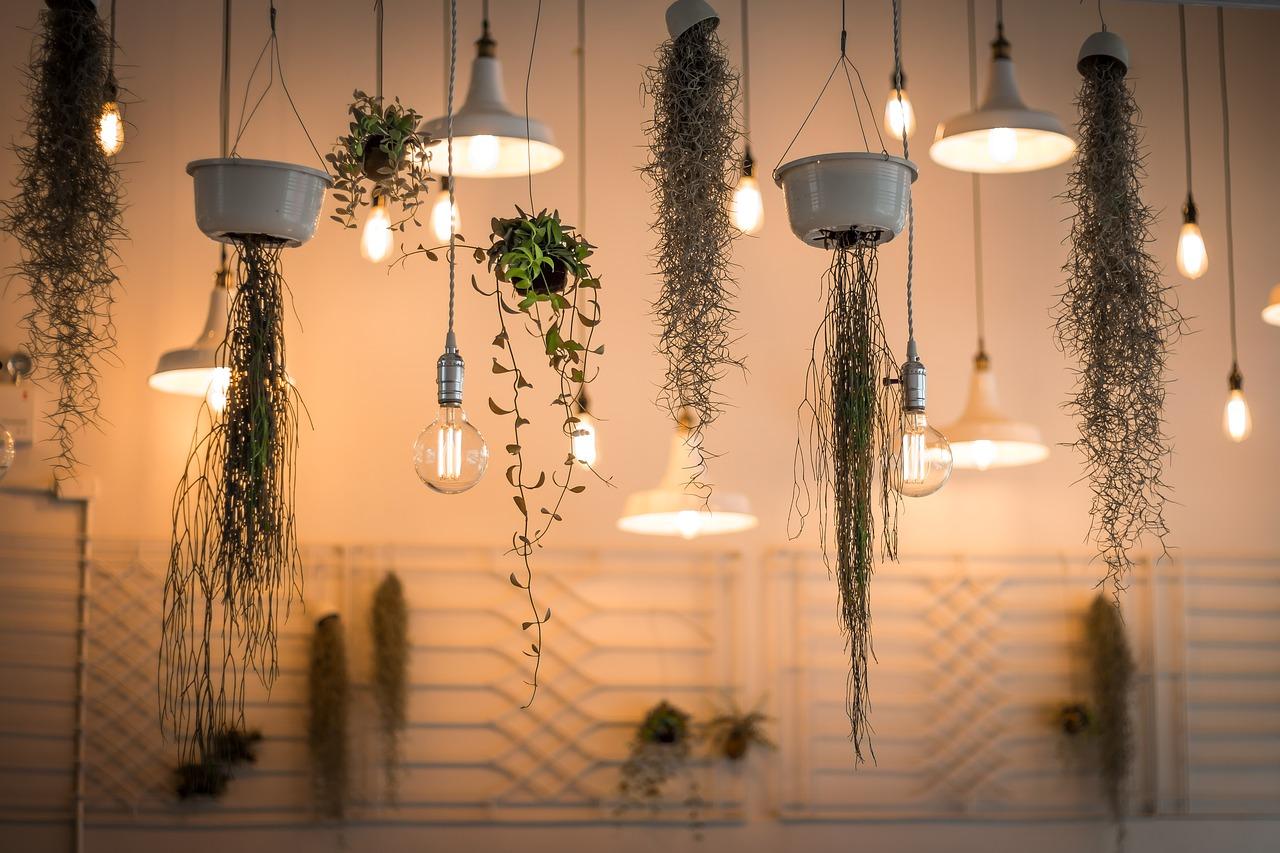 Comment décorer le salon à l'occasion d'une réception d'invités ?